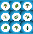 flat icon ecology set of rosemary tree wood and vector image vector image