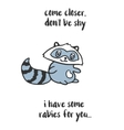 Funny mad raccoon T-shirt design vector image vector image