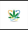 marijuana cannabis leaf logo vector image vector image