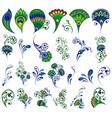 set floral elements for design vector image vector image