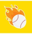 Baseball isolated team icon vector image