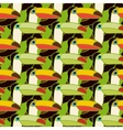 toucans bird colorful seamless pattern vector image