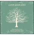 Old bare tree on vintage paper vector image vector image