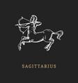 sagittarius hand drawn in engraving vector image vector image