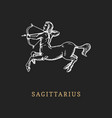 sagittarius zodiac symbol hand drawn in engraving vector image