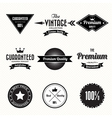 set retro vintage badges and labels vector image vector image