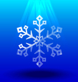 Snowflakes crystal under light vector image vector image