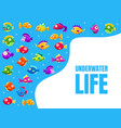 underwater life banner template with cute colorful vector image vector image