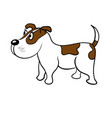 cute dog on a white background vector image