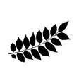 black leaves silhouette vector image