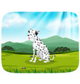 dalmatian on nature scene vector image vector image