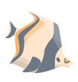 exotic aquarium fish icon isometric style vector image vector image