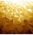 Golden Color Low Poly vector image