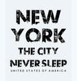 new york never sleep typography slogan vector image