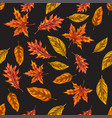 seamless pattern with autumn leaves on a black vector image vector image