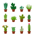 set of desert or room green cactus flat and vector image vector image