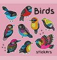 sticker set with hand drawn exotic birds vector image vector image