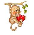 valentine monkey in love vector image vector image