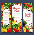 banners of tropical fruits or fresh berries vector image