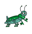 beatle friendly cute insect cartoon vector image