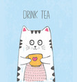 cute sketch cat with cup of tea vector image vector image