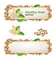 set banners with cashew and ground nuts vector image vector image
