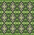 tribal ethnic texture ikat fabric vector image vector image