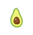 avocado fruit icon inside vector image vector image