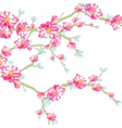 Blooming flowers on tree branch vector image vector image