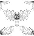 death head moth jewelry seamless pattern vector image