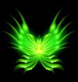 fair babka Green 01 vector image vector image