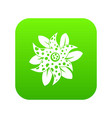 flower icon digital green vector image vector image