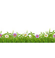 grass flowers realistic border vector image