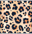 leopard pattern design funny drawing seamless vector image vector image