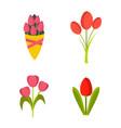 tulips icon set flat style vector image