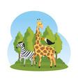 african zebra and giraffe in the savannah vector image vector image