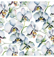Floral pattern Seamless background White orchids vector image vector image
