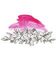 lily flower floral element botanical vector image vector image