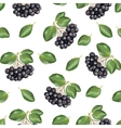 Seamless pattern with rowan vector image vector image
