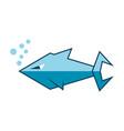 shark logo icon design vector image vector image