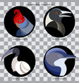 logo birds1 vector image vector image