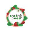 organic food ripe srawberry vector image vector image