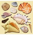 set isolated hand drawn seashell icons vector image