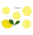 set of yellow whole and chopped lemon isolated on vector image