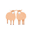 two cute sheep flat adorable vector image vector image