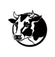logo cow head with horns with black spots vector image