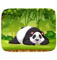 a panda in jungle scene vector image vector image