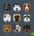 animal faces for app icons-dogs set 1 vector image vector image