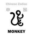 astrology monkey sign chinese zodiac vector image vector image