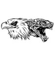 eagle fighting a snake serpent tattoo style vector image vector image